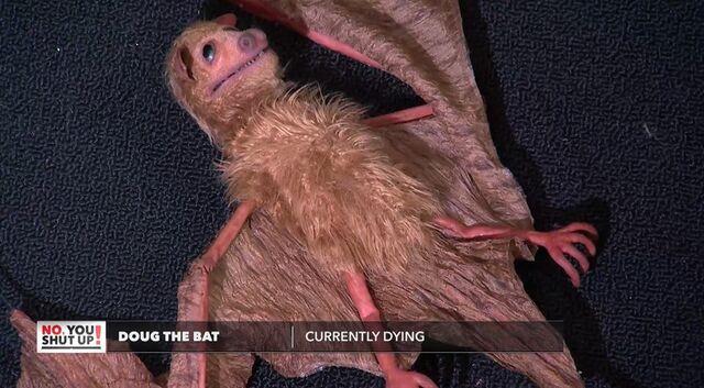 File:Doug the Bat.jpg