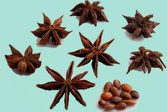 Frutos del Anís estrellado (Illicium verum Hook.)