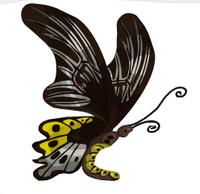 Rippon Birdwing