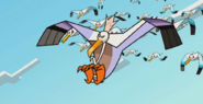 Prince of Seagulls 007
