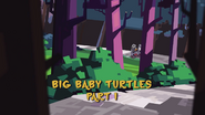 Big Baby Turtles 001