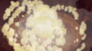 Ants 026