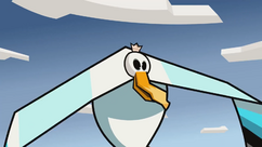 Prince of Seagulls 019