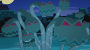 Hydra 027