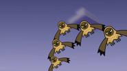 Owls 24
