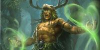 Elder Shaman