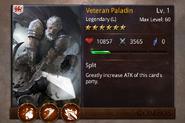 VeteranPaladin