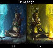 DruidSageEvo