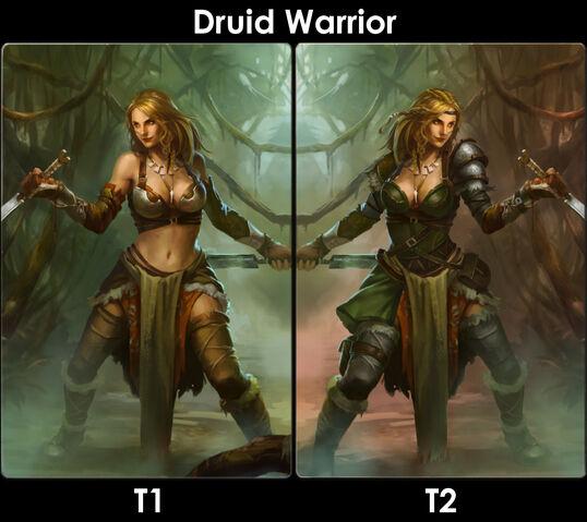 File:DruidWarriorEvo.jpg