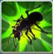 File:Ant sentry.jpeg