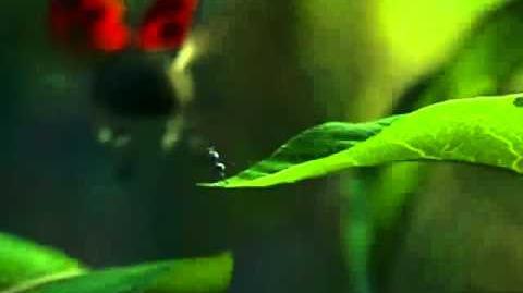A Bug's Life 1998 - Teaser Trailer