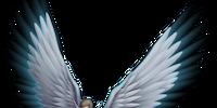CaC-Angels