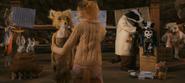 Mr. Fox tending to children