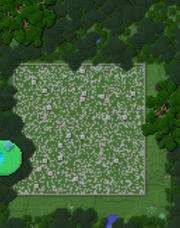 Naga courtyard on map