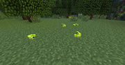 Twilight Forest Moonworms