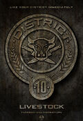 District-10