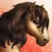 Dartmoor Pony T2