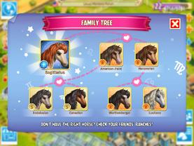 Sagittarius Horse Family Tree
