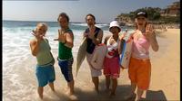 Infobox Surfing Safari
