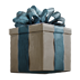 File:Collection Gift-icon.png