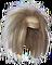 HO SilkRoad Wig-icon