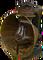 HO PBarn Oil Lamp-icon