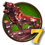 Quest Kipling's Tiger 7-icon