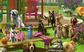 Scene Dog Park (Scene)-icon.png