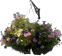 File:HO SummerStreets Flowers-icon.png