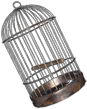 File:HO Long Cold Night Bird Cage -icon.png
