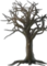 HO TitanicDeparture Tree-icon