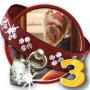 Quest Doggone Dog 3-icon