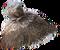 HO RFront Hay bale-icon