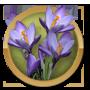 Jillian's Challenge Questline-icon