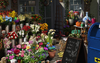 Scene Florist Shop-icon.png