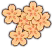HO GeishaTeahouse Cherry Blossoms-icon