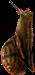 HO MRoom Snail-icon