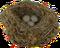 HO SwimPool Bird Nest-icon