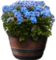 HO SEHunt Barrel Planter-icon