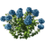Marketplace Blue Hydrangea-icon.png
