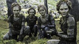 Hijos del Bosque HBO T6