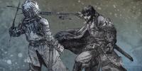 Asedio de Viejo Wyk