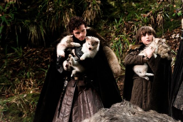 Archivo:Robb, Bran y huargos HBO.jpg