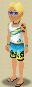 File:Male Level 4 Surfer Outfit.jpeg