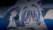 Kawaii sleeping Koneko