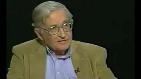 Noam Chomsky on Popular Movements and American Culture