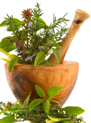File:Herbal remedy prehistoric.jpg