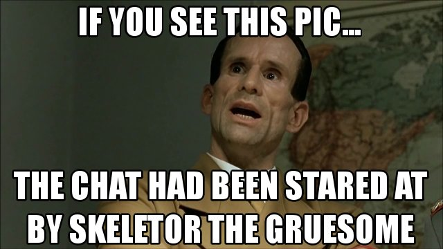 File:If you see this pic chat skeletor.jpg