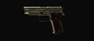 Layla's JAGD P22G