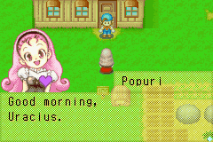 Harvest Moon - Friends of Mineral Town 04